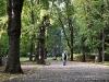 Park Skaryszewski 11