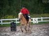 Zawody Jeździeckie w stylu Western 01
