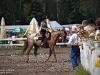 Zawody Jeździeckie w stylu Western 10